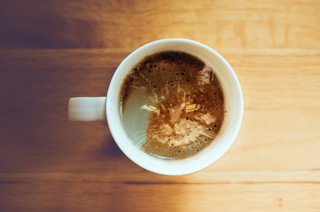 How much coffee is poisonous to cats?